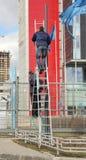 2 работника на лестнице Стоковая Фотография RF