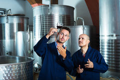 2 работника на фабрике вина Стоковые Изображения RF