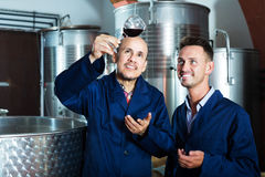2 работника на фабрике вина Стоковое Изображение