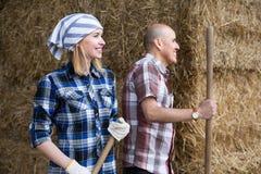 2 работника подготавливая траву для подавая коров Стоковое Изображение RF