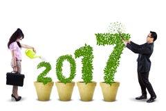 2 работника с деревом и 2017 Стоковое Изображение RF