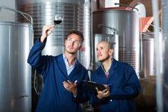 2 работника с образцом вина на винодельне Стоковая Фотография RF