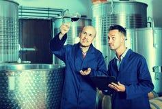 2 работника с образцом вина на винодельне Стоковые Изображения