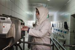 Работники женщин входя в производственную установку после hygiening процесс Стоковое Фото