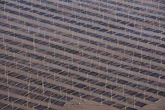 Работники моря Стоковая Фотография RF