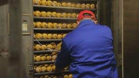 Работники нагруженные и закрытый поднос с сосиской в печи для термической обработки акции видеоматериалы