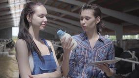 Работники портрета 2 милые женские на ферме коровы проверяя качество молока в бутылке Один планшет удерживания девушки внутри видеоматериал