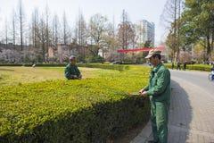 Работники сада Стоковое Изображение RF