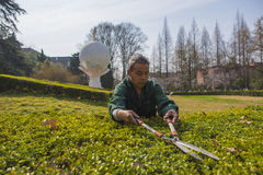Работники сада Стоковое Фото