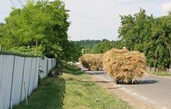 Работники сена идя домой стоковые фото