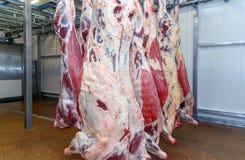 Работники скотобойни мяса вырезывания в фабрике мяса Стоковые Фото