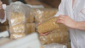 Работники упаковывая сырцовую макарон от производственной линии в макаронных изделиях manufactury стоковые изображения rf