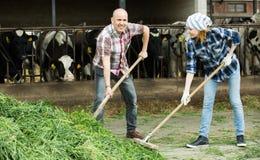 Работники фермы с вилами приближают к амбару стоковая фотография rf