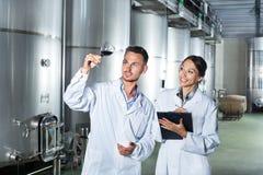 Работники человека и женщины на manufactory винодельни Стоковое Изображение RF