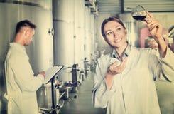 Работники человека и женщины на manufactory винодельни Стоковая Фотография RF