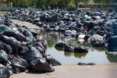 работники toronto забастовки города Стоковая Фотография