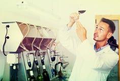 работник ¿ ï» держа бокал вина Стоковые Изображения