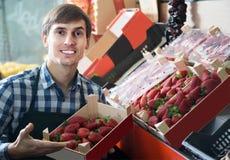 Работник бакалеи продавая свежую клубнику на местном рынке Стоковая Фотография RF
