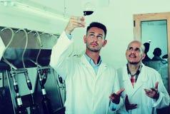 Работник винодельни держа бокал вина Стоковая Фотография