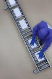 Работник в голубой форме работая с коробками на линии упаковки Стоковые Фото