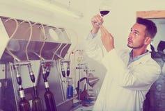 Работник держа бокал вина Стоковое фото RF