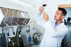 Работник держа бокал вина Стоковое Фото