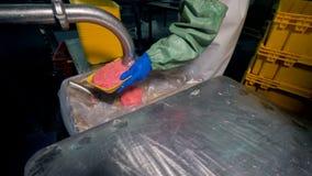 Работник заполняет пластичные подносы с семенить мясом видеоматериал