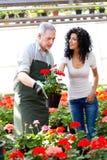 Работник и клиент зеленого дома Стоковые Изображения RF