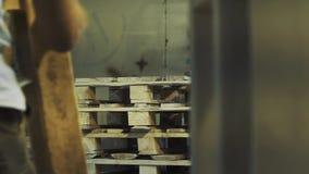 Работник кладет деревянное palett на стог, другие srarts человека крася его акции видеоматериалы