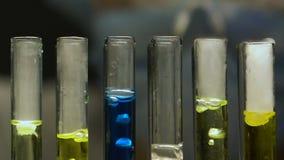 Работник лаборатории добавляя жидкость в пробирки, сравнивая кипя реакцию, продукция видеоматериал