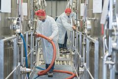 Работник молокозавода в магазине молока Стоковое фото RF