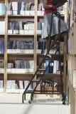 Работник офиса на лестнице в комнате памяти файла Стоковые Изображения