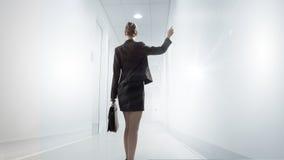работник офиса предпосылки зеленый Стоковое Фото
