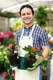 Работник парника держа цветочные горшки Стоковая Фотография