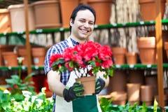 Работник парника держа цветочные горшки Стоковая Фотография RF