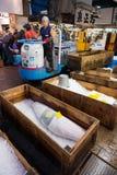 Работник рынка управляя вагонеткой проходя, который замерли мясо тунца Стоковая Фотография RF