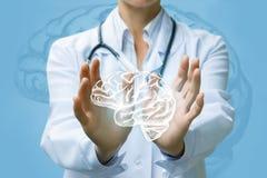 Работник службы здравоохранения показывая мозг персоны Стоковое Изображение RF