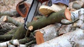 Работник с цепной пилой газа, звуком, вырезыванием, древесиной sawing для швырка акции видеоматериалы