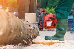 работник lumberjack пущи chainsaw Стоковое Фото
