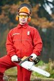работник lumberjack пущи chainsaw Стоковые Изображения