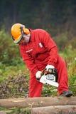 работник lumberjack пущи chainsaw Стоковое фото RF