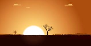 равнина ландшафта пустыни Стоковые Изображения