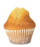 равнина пирожня Стоковое Изображение