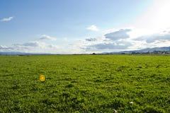 Равнина Стоковое фото RF