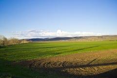 Равнина Стоковое Изображение