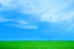 равнина Стоковая Фотография RF