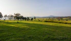 Равнина Tha Таиланда Стоковое фото RF