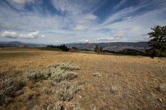 Равнины гористой местности Йеллоустона Стоковые Фотографии RF