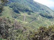 Равнины Horton в Шри-Ланка стоковая фотография rf