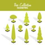 Равновеликий комплект дерева вектора Стоковые Фото